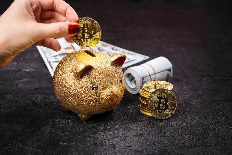 Bitcoins, valuta- och piggiebank royaltyfria bilder