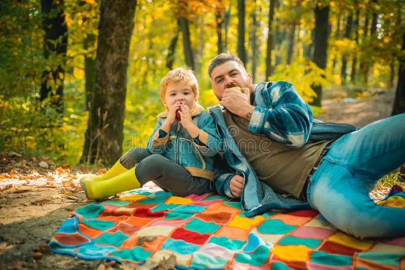 Bite juicy apple. Healthy snack. Family picnic. Hipster bearded dad with son spend time in forest. Brutal bearded man stock photo