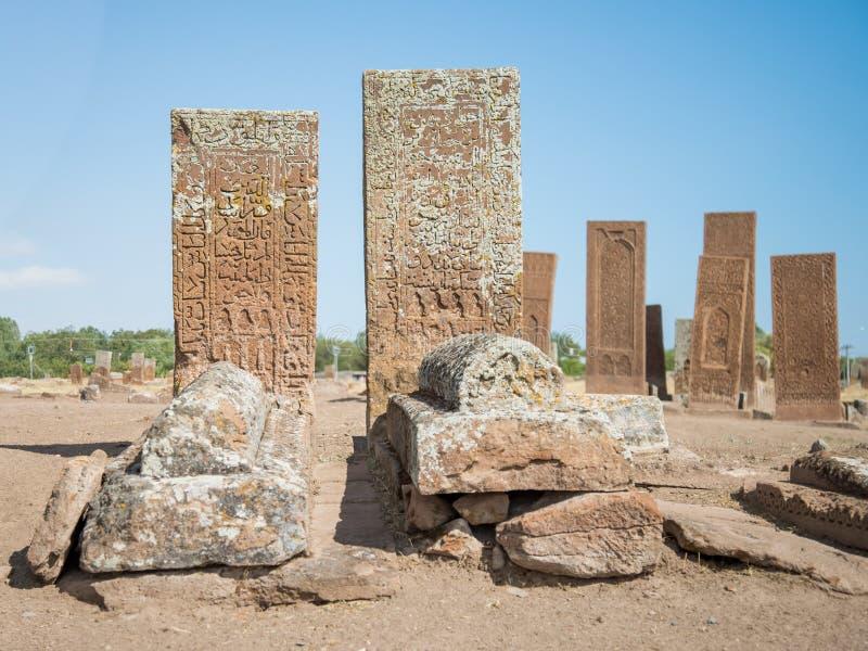 Bitlis, Турция - 28-ое сентября 2013: Кладбище Ahlat, надгробные плиты Seljuk средневековых исламских знаменитостей стоковые фотографии rf