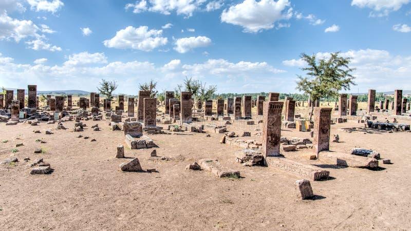Bitlis, Турция - 28-ое сентября 2013: Кладбище Ahlat, надгробные плиты Seljuk средневековых исламских знаменитостей стоковое изображение