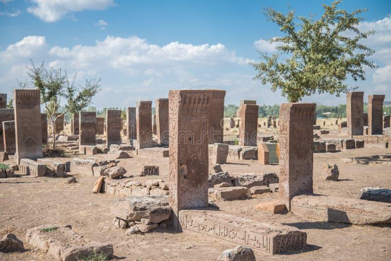 Bitlis Turkiet - September 28, 2013: Seljuk kyrkogård av Ahlat, gravstenarna av medeltida islamiska notabiliteter arkivfoton