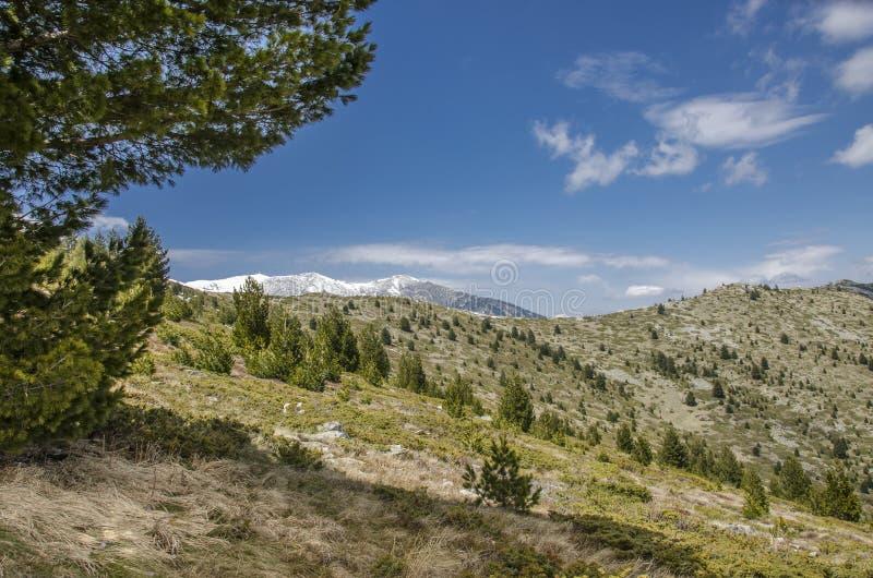 Bitola - vue de parc national de Pelister, Macédoine photographie stock