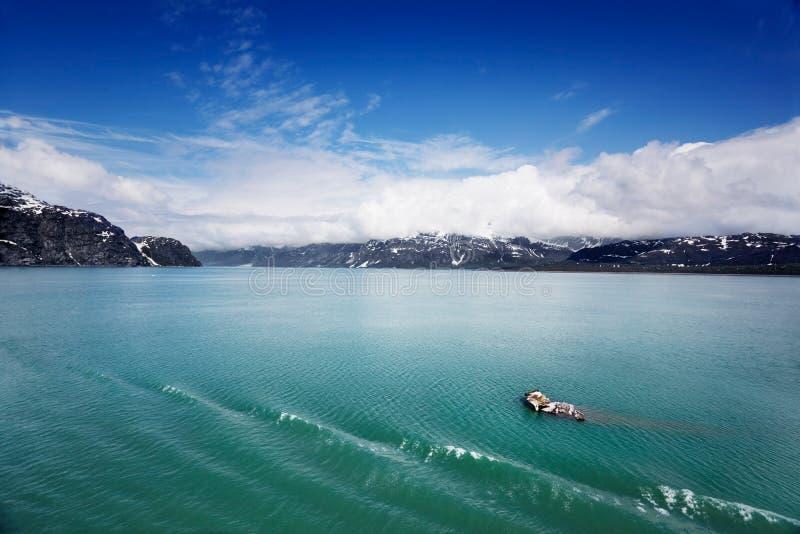Bits de Bergy dans le compartiment de glacier photo libre de droits