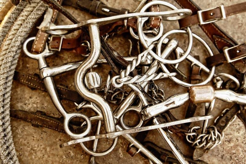 Bits de cheval, cuir de pointe et corde (Brown) images stock