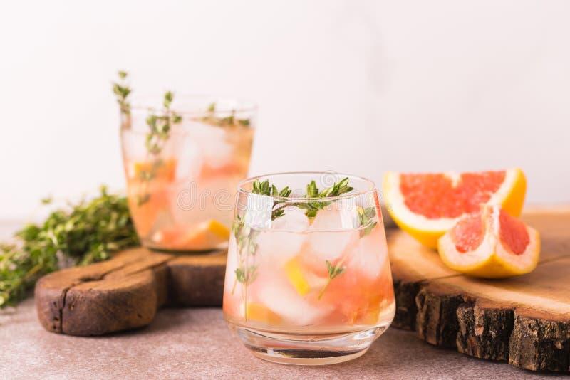 Bitter citron för gin med timjan och grapefrukten Fruktlemonad fotografering för bildbyråer