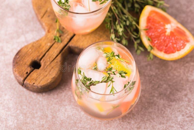 Bitter citron för gin med timjan och grapefrukten Fruktlemonad arkivfoto