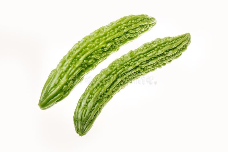 Bittere Melone lizenzfreies stockfoto