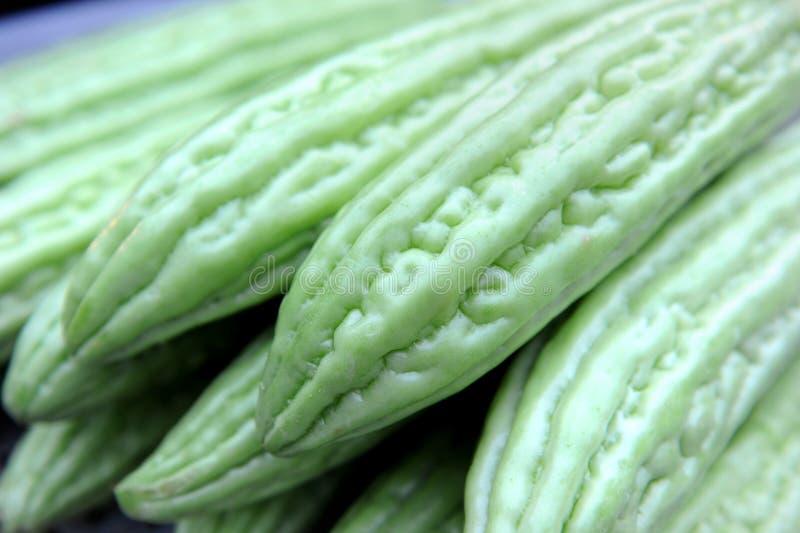 Bittere Melone lizenzfreies stockbild