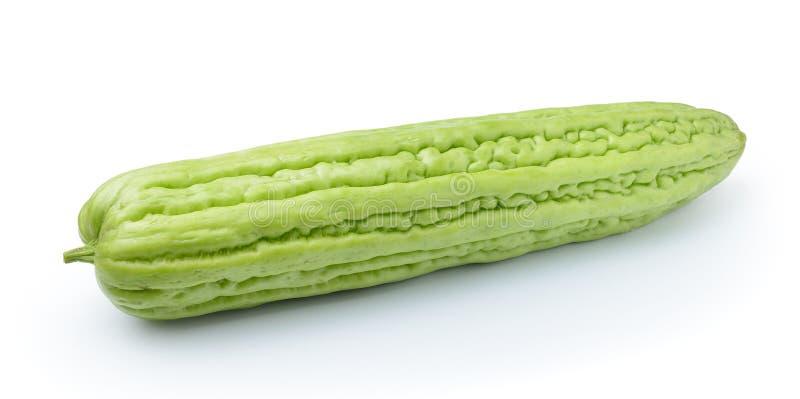 Bittermelon lokalisierte auf weißem Hintergrund lizenzfreies stockbild