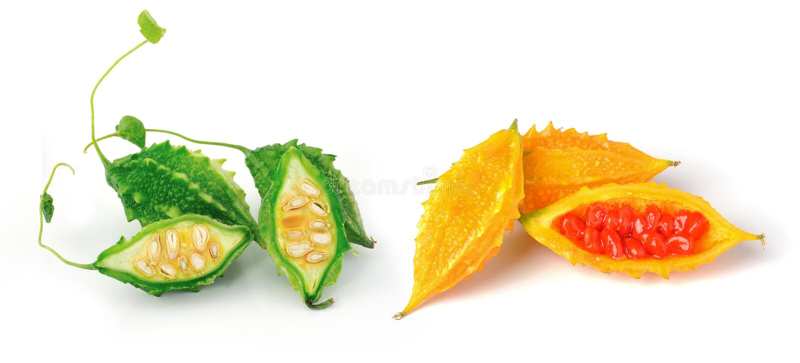 Bittermelon lokalisierte auf weißem Hintergrund lizenzfreies stockfoto