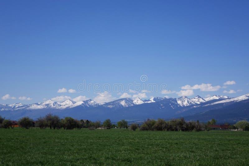 Bitterroot-Berge nahe Hamilton, Montana lizenzfreie stockfotos