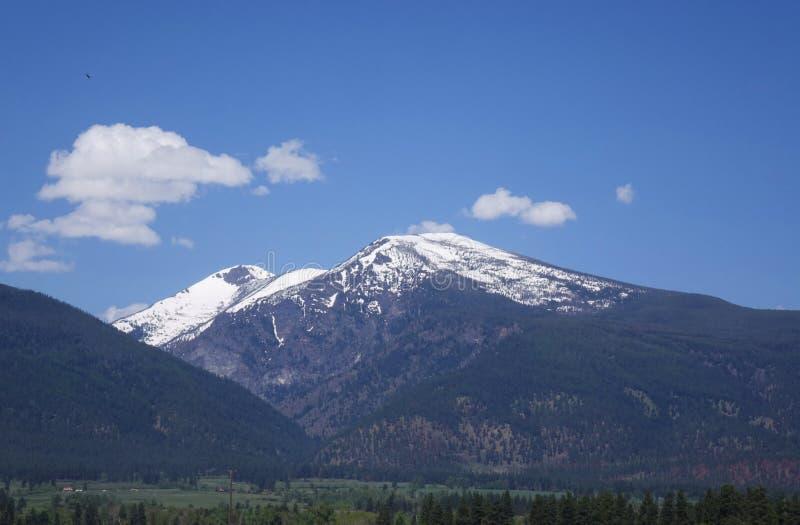 Bitterroot-Berge nahe Hamilton, Montana lizenzfreies stockfoto
