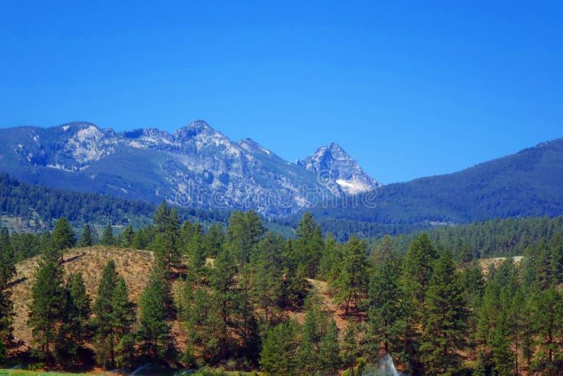 Bitterrootbergen dichtbij Darby, Montana stock afbeelding