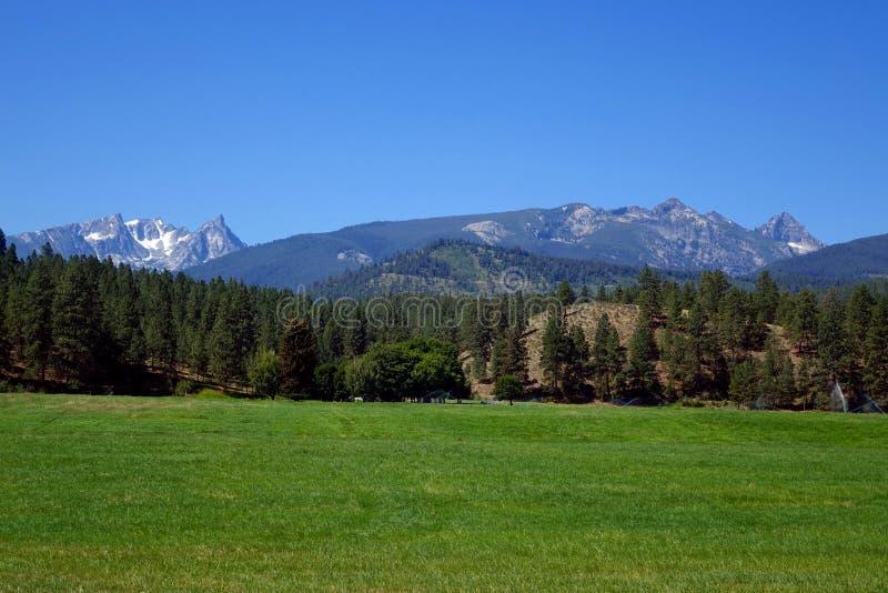 Bitterrootbergen dichtbij Darby, Montana stock foto