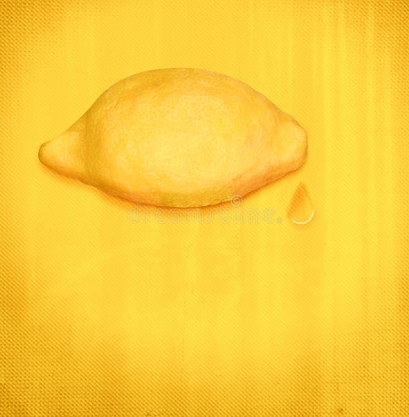 Bittra revor, citron med droppe av fruktsaft, begrepp fotografering för bildbyråer