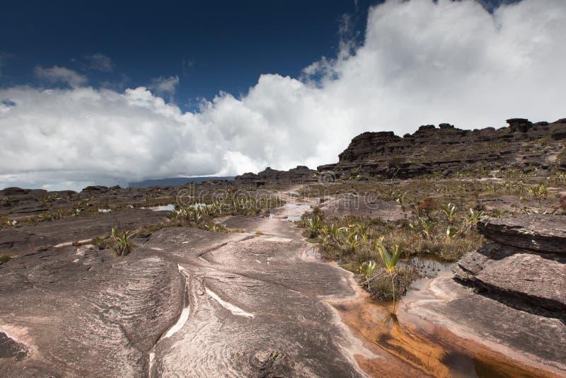 Bizarre oude rotsen van tepui van plateauroraima - Venezuela, Latijns Amerika stock afbeeldingen