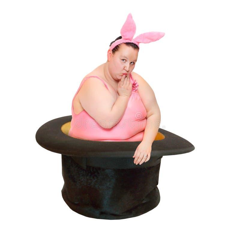 Bizarre rabbit in magician hat. stock image