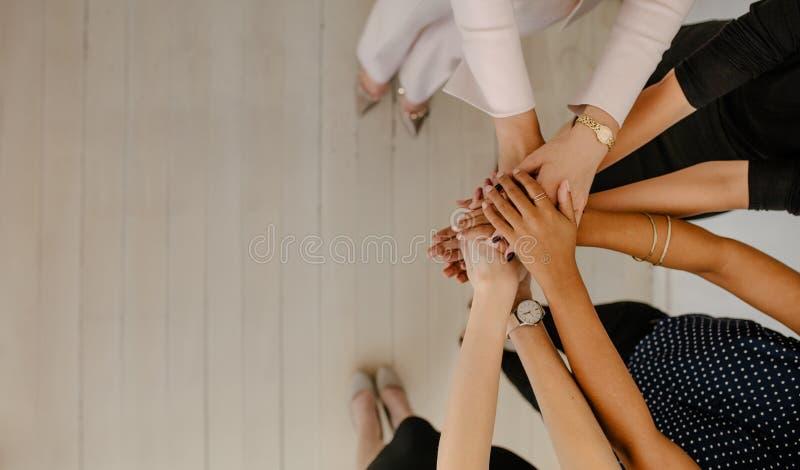 Biznes drużynowa pokazuje jedność obraz royalty free