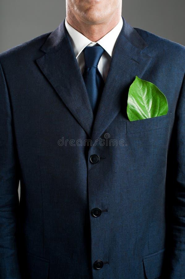 biznes zieleń fotografia stock