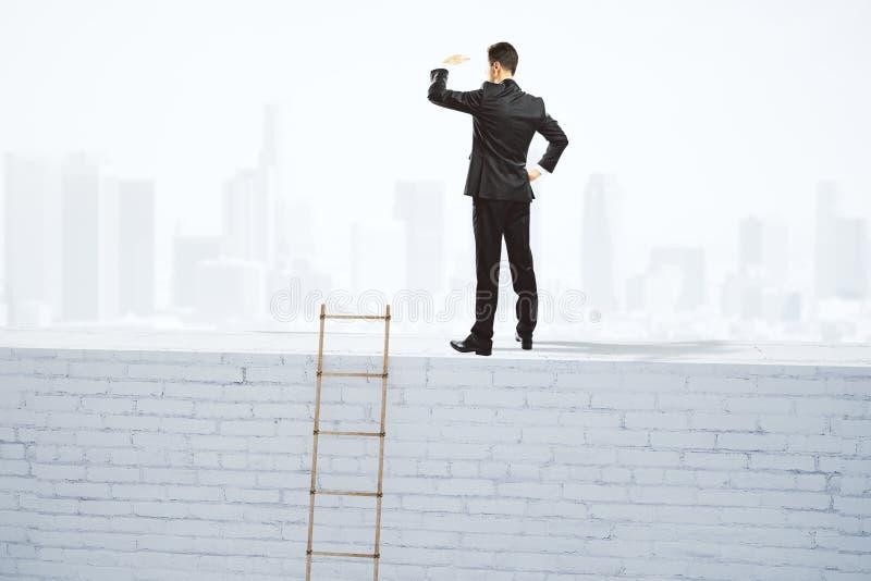 Download Biznesmenów Spojrzenia W Odległość Na Wierzchołku Biały Ceglany Wa Obraz Stock - Obraz złożonej z 1, tło: 65225189