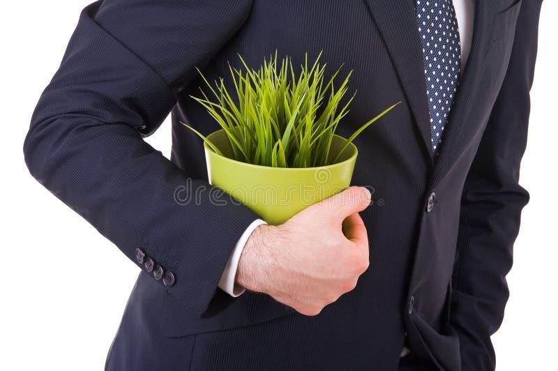 Biznesmen mienie puszkująca roślina. obraz stock