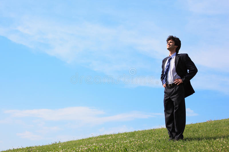 biznesmena łąki stojak zdjęcia royalty free