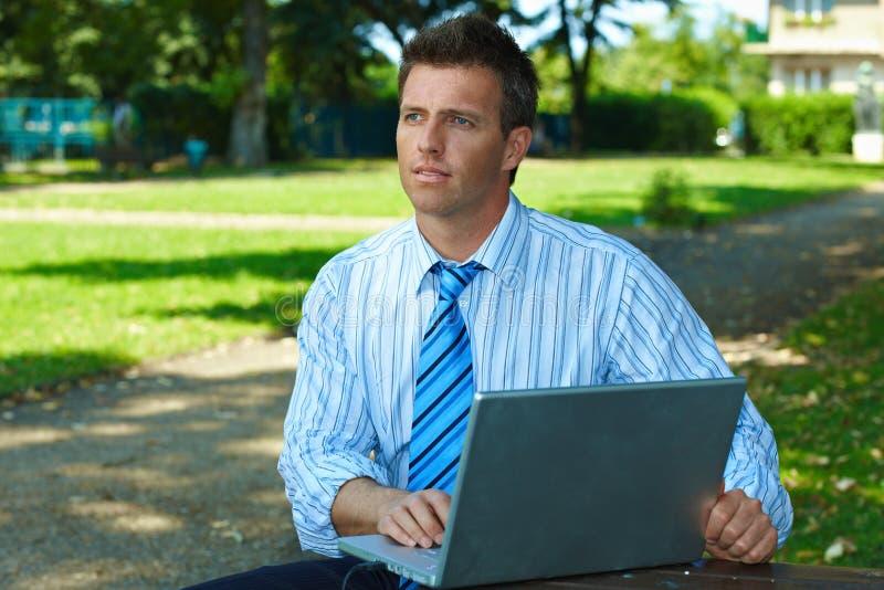 biznesmena laptopu park obrazy stock