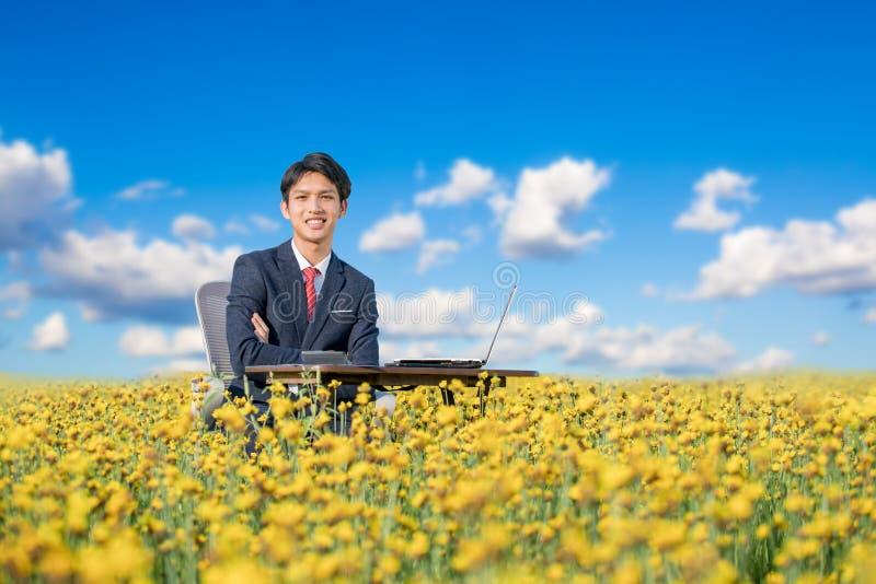 Biznesmena pracować plenerowy w kwiatu polu fotografia royalty free