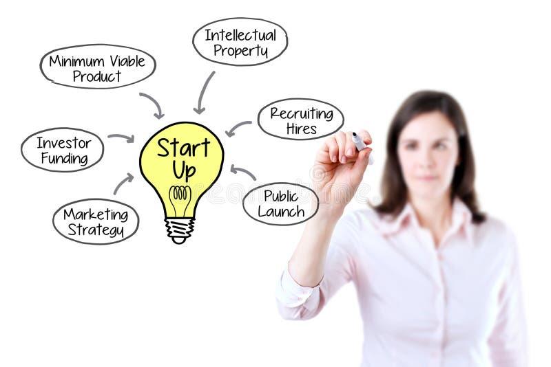 Biznesowa kobieta rysuje Początkowego modela biznesu pojęcie Odizolowywający na bielu zdjęcie royalty free