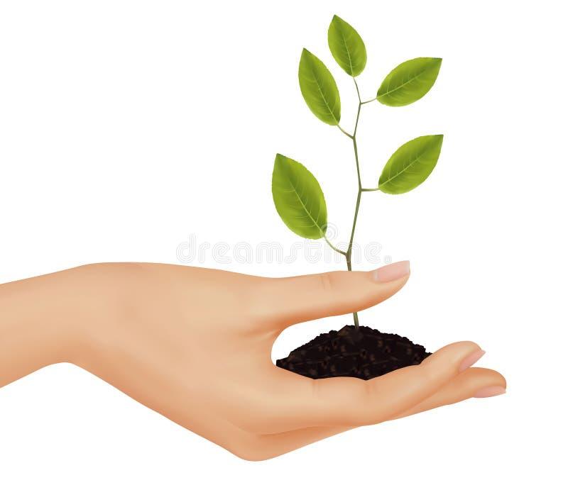 biznesowi pojęcia mienia osoby rośliny potomstwa ilustracji