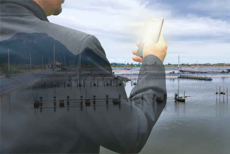 Biznesowy mężczyzna z smartphone na garneli gospodarstwa rolnego tle zdjęcie stock