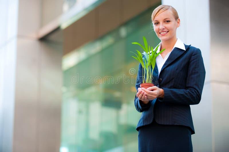 biznesowy przyrost zdjęcie stock