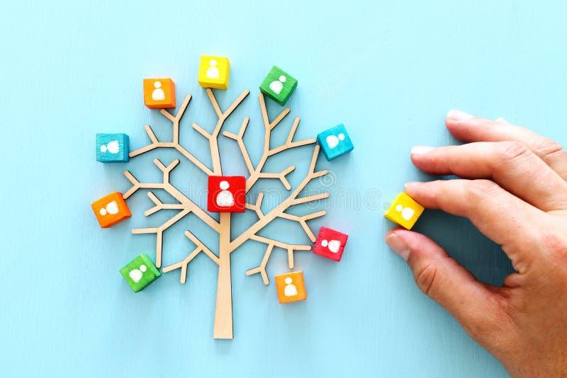 Biznesowy wizerunek drewniany drzewo z ludźmi ikon nad błękita stołem, dział zasobów ludzkich i zarządzania pojęciem, obraz stock