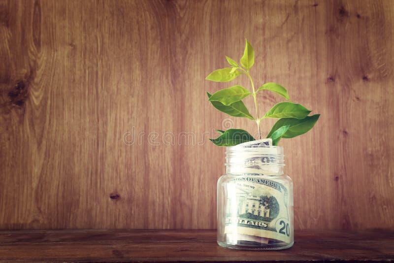Biznesowy wizerunek rośliny dorośnięcie w oszczędzaniach zgrzyta, pieniądze inwestycja i pieniężny wzrostowy pojęcie obrazy stock