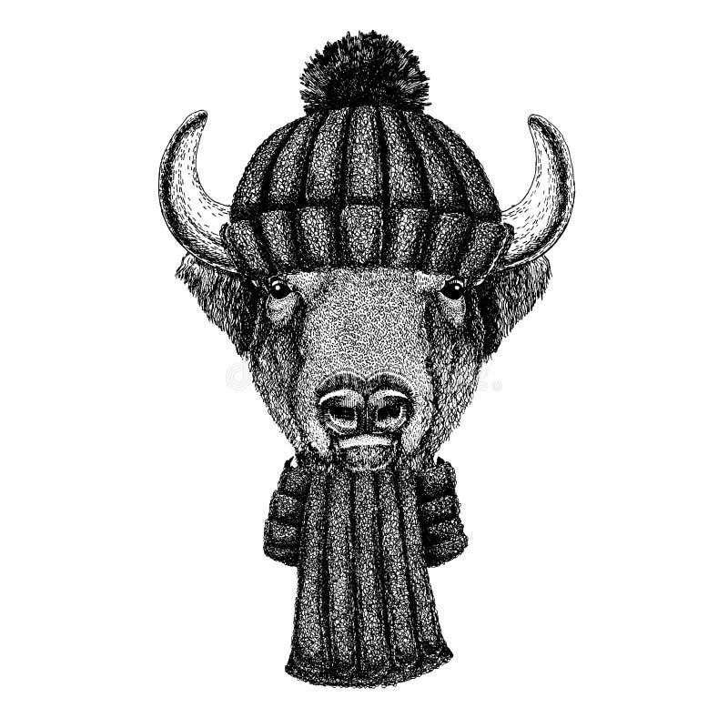 Bizon, żubr, wół, byka Chłodno zwierzę jest ubranym trykotowego zima kapelusz Ciepła pióropuszu beanie bożych narodzeń nakrętka d ilustracja wektor