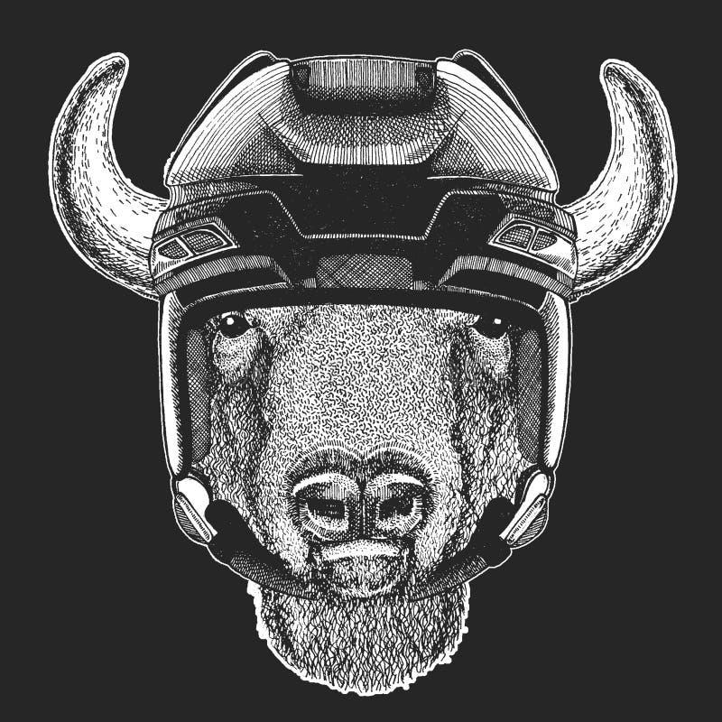 Bizon, żubr, wół, byka dzikie zwierzę jest ubranym hokejowego hełm Druk dla koszulka projekta royalty ilustracja