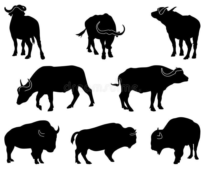 Bizon en Buffels vector illustratie