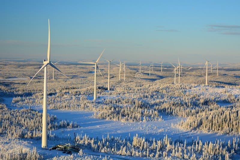 Björkhöjden从高度的风力场 免版税库存照片
