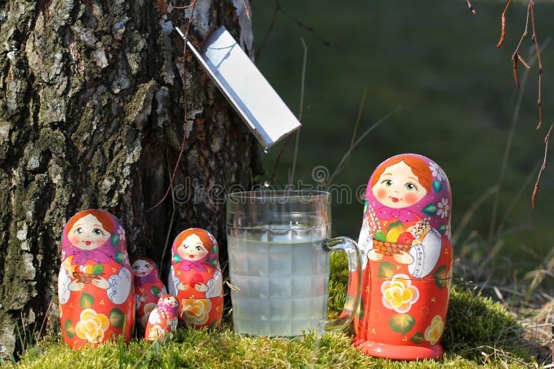 Björkfruktsaft och bygga bo dockor royaltyfria bilder