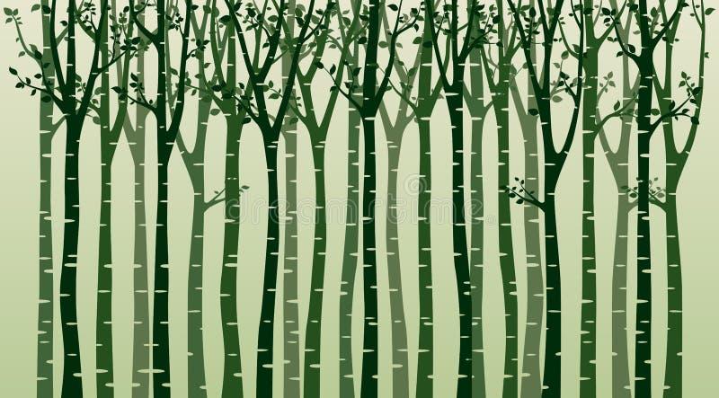 Björkträd med fågelkonturn på grön bakgrund royaltyfri illustrationer