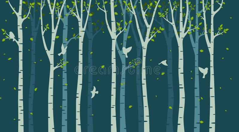 Björkträd med fågelkonturn på grön bakgrund vektor illustrationer