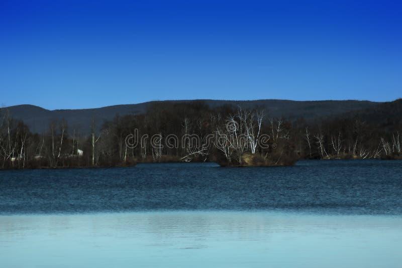 Björkträd runt om ett sent höstdamm arkivbilder