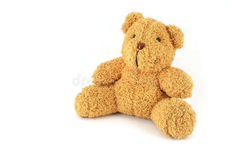 björn isolerad nalle arkivbild