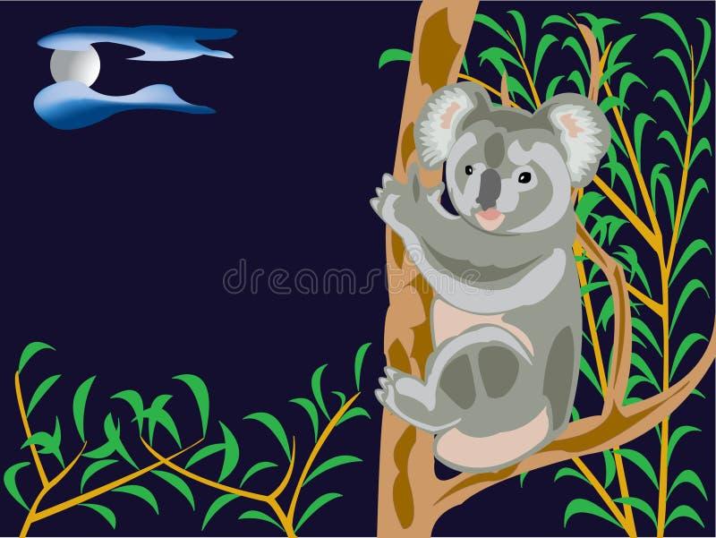 björnkoala royaltyfri illustrationer