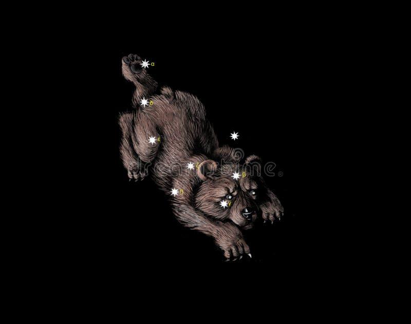 björnkonstellation little vektor illustrationer