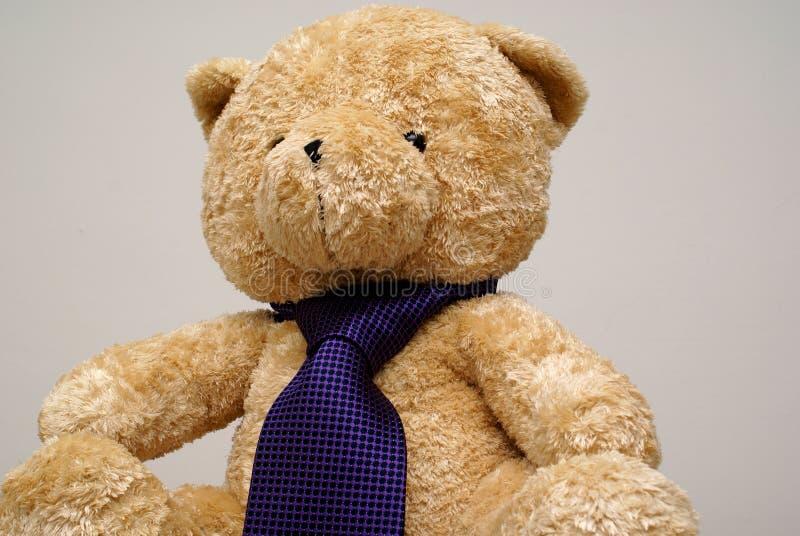 björnnalletie royaltyfri bild