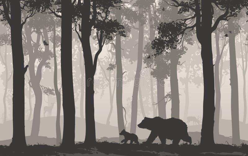 Bj?rnar i skogen royaltyfri fotografi