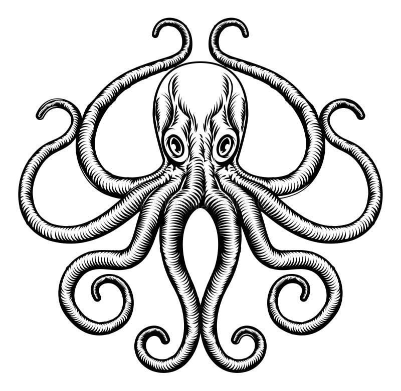 Bläckfisk- eller tioarmad bläckfiskillustration stock illustrationer