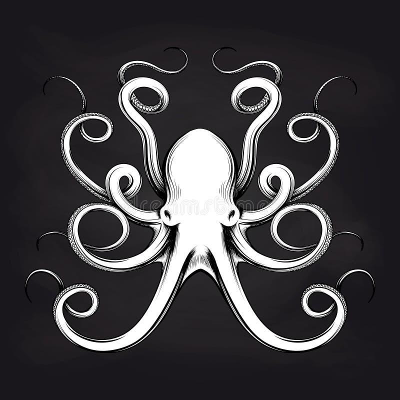 Bläckfisken skissar design på svart tavla royaltyfri illustrationer