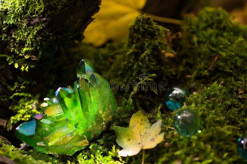 Blänka gröna magiska kristaller i skogen arkivfoto